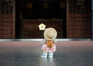 梅雨を彩るアジサイを見に「智積院」へ。静かさに包まれた境内…弘法大師さまに願う心安らかな日々