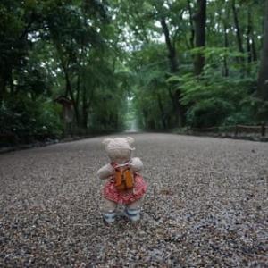 ミモロといっしょに京散歩。雨の「下鴨神社」。7月23日からの「足つけ神事」の設営も完了