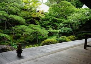 緑の楓と苔の美しさに感激!紅葉の名所「永観堂禅林寺」は、夏もすごく素敵な場所