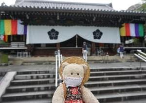 夏の京都のお楽しみの「暁天講座」。朝6時半に向かった「智積院」