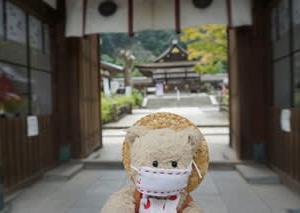 ご神水が涼を誘う「松尾大社」。涼やかな風鈴の音が響く境内へ