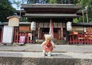 弘法大師創建の山城国最古の社「平岡八幡宮」。「花の天井」の特別公開12月6日まで。