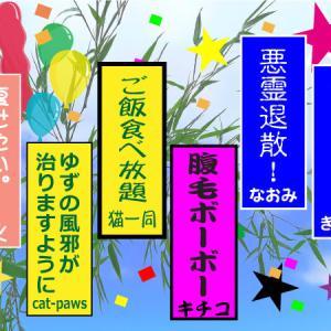 七夕祭り2020-3