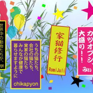 七夕祭り2020-5
