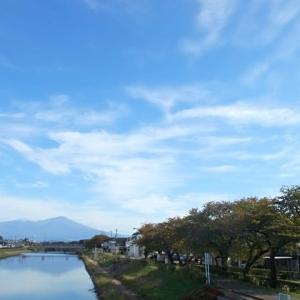 秋晴れの土手撮歩
