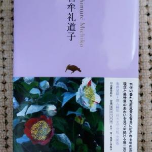 「終日雨、石牟礼道子の本が届く」No.3915