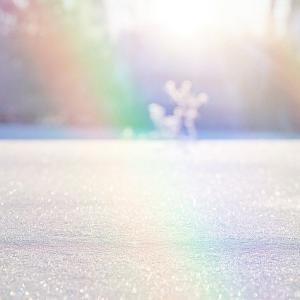 貴重な晴れ間の有効活用法☆この冬を元氣に過ごすために♡