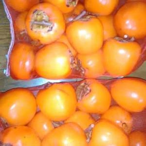 今年もネット入り渋柿を注文しました~♪