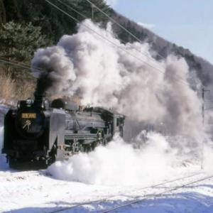 保存蒸機の行方~D51 498