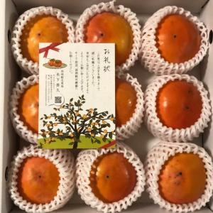 橋本市からふるさと納税の感謝品をいただきました