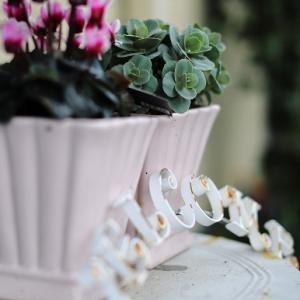 """3月の花と暮らし。 それから、すてきな春の""""お誘い"""""""