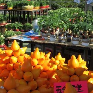 年宵市場 香港