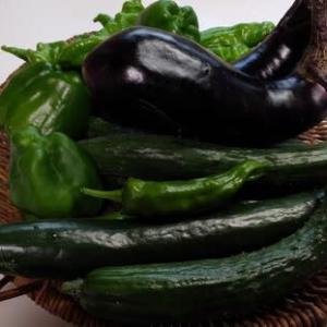 野菜の収穫時期。