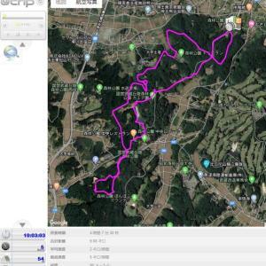 昨日、妻と武蔵丘陵森林公園を歩いて体力回復を図った