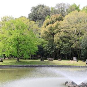 昨日、妻と近くの城山公園まで散策してきた