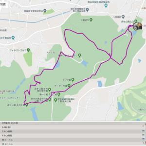 自粛解除で昨日、妻と久し振りに武蔵丘陵森林公園を歩いた