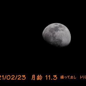 また月を撮った