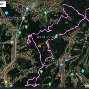 一昨日、妻と森林公園を11km程散策した
