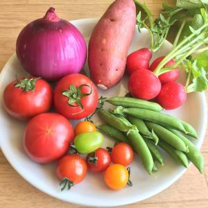 マンネリ打破&野菜料理!コロナで自炊に飽きて買ってみた本
