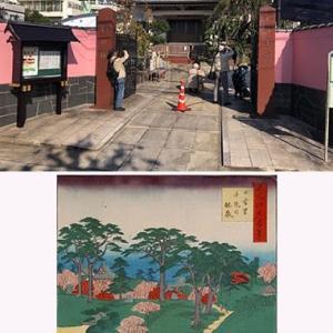 新企画の「歌川広重・名所江戸百景+下町界隈撮影会」が無事終了。