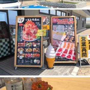 話題の「漁港の駅 TOTOCO小田原」でしたが少しガッカリです。