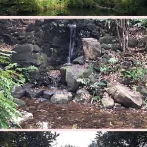 気になっていた「甘泉園公園」に行って来ました。