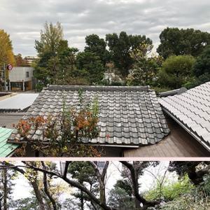 念願の横山大観記念館に「行ってきました。