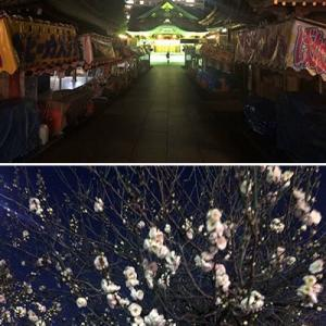湯島天神では梅の開花も始まり・・・早い春が来そうです。