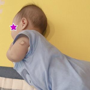 【双子】予防接種とキウイブラザーズ