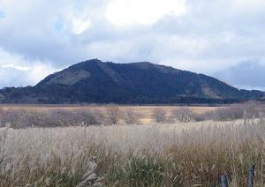 八島ヶ原湿原から「鷲ヶ峰」に登る