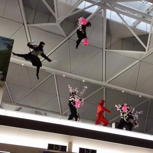 特典航空券で行く沖縄☆久々のプレミアムラウンジセントレア