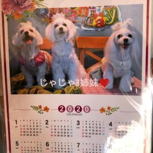 じゃじゃ3姉妹カレンダー♪
