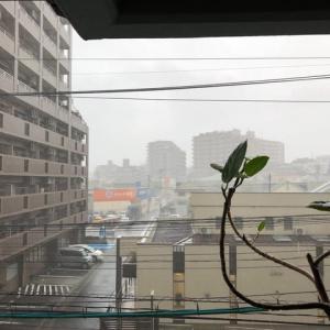 雨が凄かった