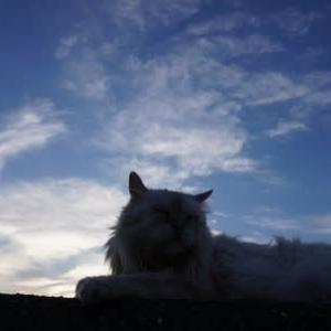6月夕方の海 雲が夕日色に変化