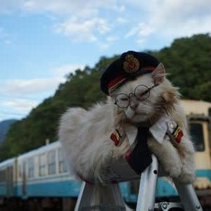 駅猫じゃないけど今日の見送り終了にゃぁ