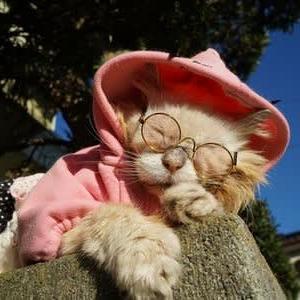 ピンクの服にピンクのメガネ