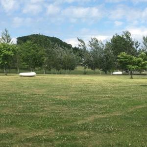 今日の東山公園(久しぶりの晴天でした)