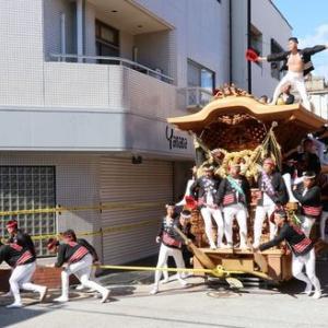 2019年岸和田だんじり祭り試験挽きUPちょっと待ってね!