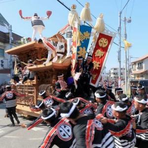 2019年岸和田だんじり祭り 本宮(午後曳行)