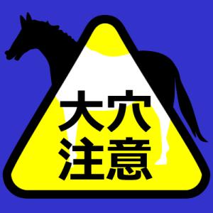京成杯21'中山日曜版