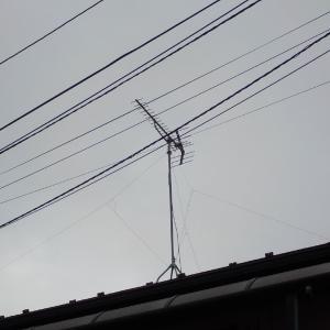 31日 市川市宮久保 配線器具総交換現地見積り