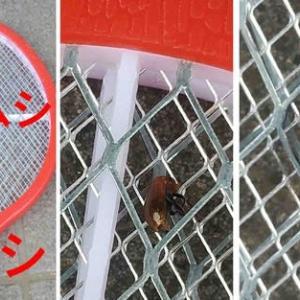 キュウリの害虫駆除方法