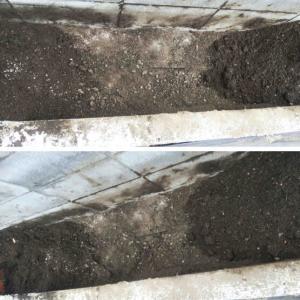 キュウリの跡を約40cm掘って