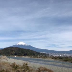 富士山を観るといつも「心ウキウキ」