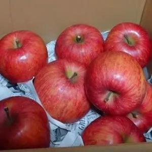 dポイントで買った青森りんご