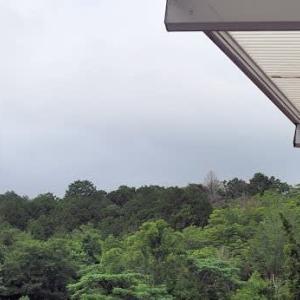 今朝の笹間ヶ岳