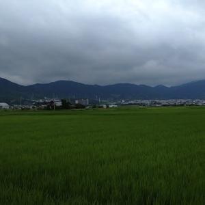 けさ、5時20分ごろの京滋府県境