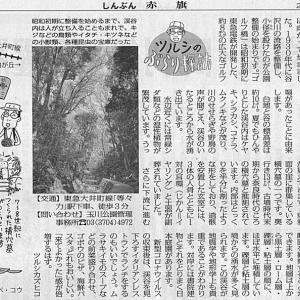 23区と思えぬ自然 東京 等々力渓谷/湧水・樹林・横穴墓群 ツルシのぶらり探訪・・・今日の赤旗記事