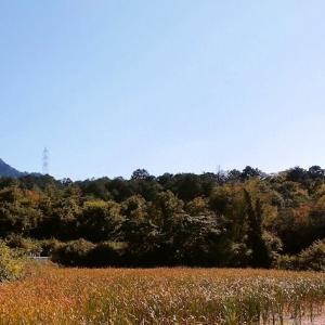 笹間ケ岳と小山池/午後1時半ごろ、家の前から撮影
