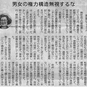 性犯罪刑法改正 男女の権力構造無視するな/千葉大学教授:後藤弘子さん・・・今日の赤旗記事
